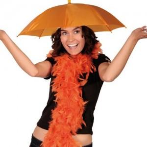 paraplu-wk