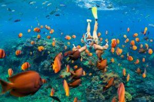 Snorkelen en kajakken
